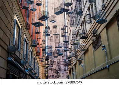 bird cage alley in sydney