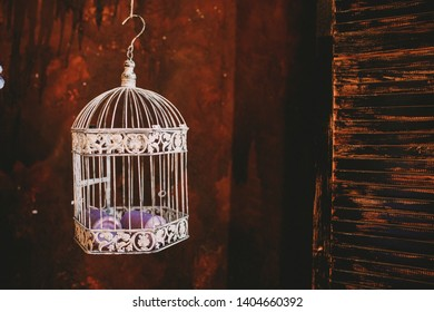 bird cage on red background