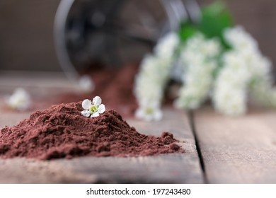 bird cherry flour on old wooden table with bird cherry blossoms