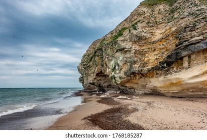 Bird cliffs in Bulbjerg near Lild beach in Thy, Denmark