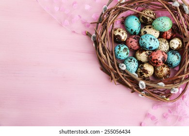 Bird colorful eggs in nest on bright background