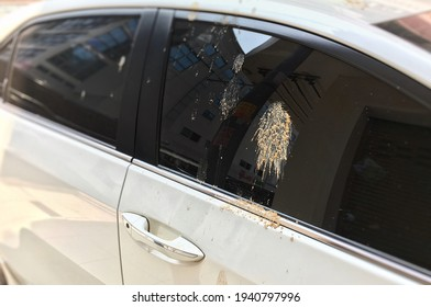 Bird droppings that are excreted. Put in a newly washed car parked on the side of the road. It causes dirt and boredom and is a source of germs.