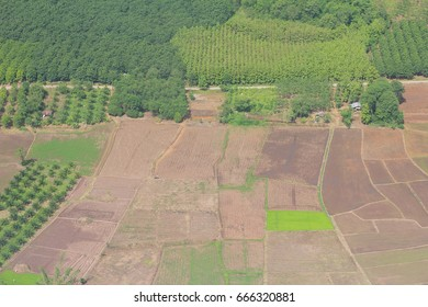 Bird eyes view agriculture in Thailand