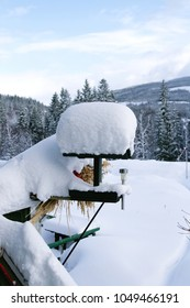 Bird feeder covered With snow
