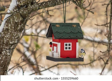 Bird feeder hanging from a tree. Red birdhouse with blue tit during winter in snow.