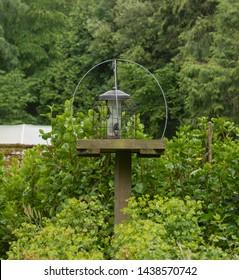 Bird Table Garden Images Stock Photos Vectors Shutterstock