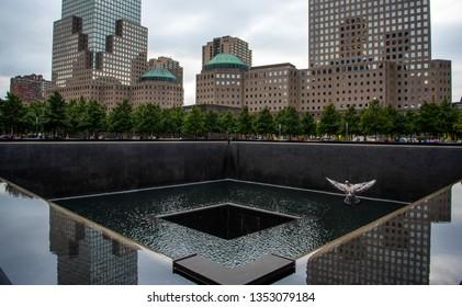 Bird in flight over 9 11 Memorial fountain in New York Manhattan