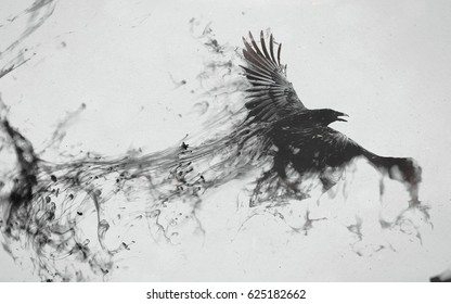 Bird - Flying Black Raven