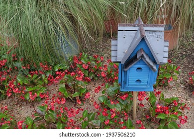 bird house in flower garden, urban farming