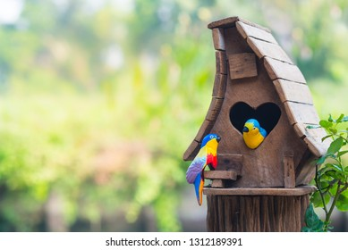 Bird house heart-shaped entrance and two love birds in the garden
