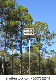 Bird house on tall pole with trees and blue sky in the background