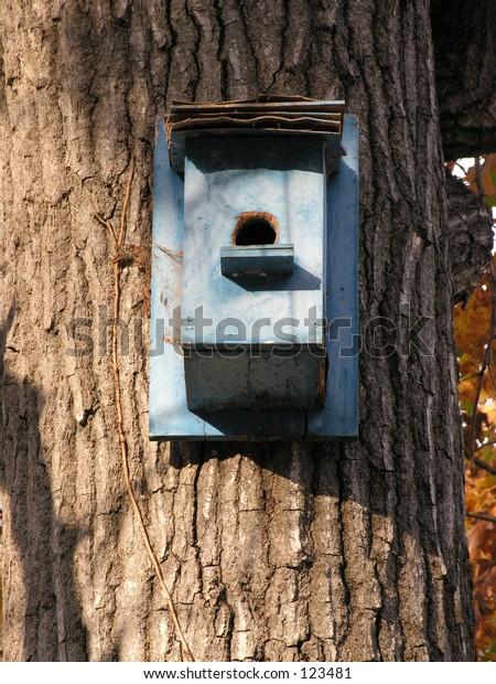 Bird house on tree.