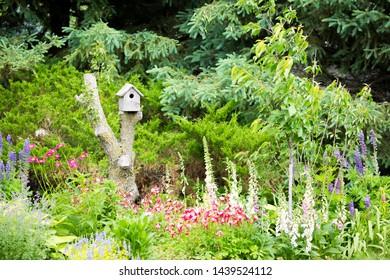 Bird house sit on tree stump in  beautiful garden.
