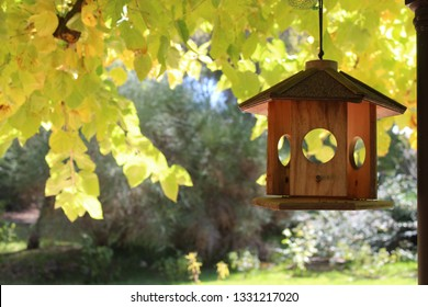 bird house in a tree in summer