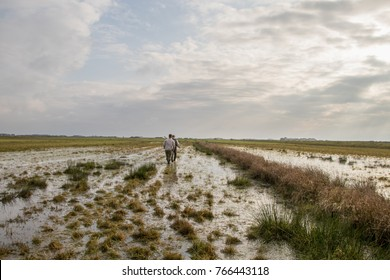 Bird hunting in a flooded field.