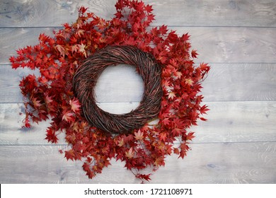 Bird Nest Fantasy Background Photo Prop with vine and red leaves Isolated on distressed wood. Newborn photography digital background prop.