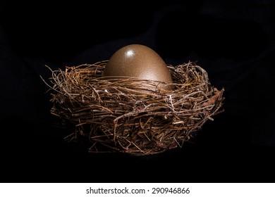 Bird nest with golden egg on black background.