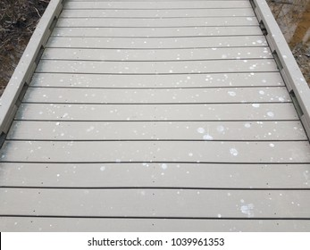 bird poop on wood boardwalk