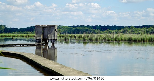 Bird watching shed on the lake
