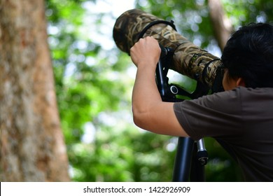 Bird watching, Bird Watcher used the super-telephoto camera to take a photo bird in the National Park