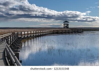 Bird watcing tower and footbridge on Liepaja lake, Latvia.