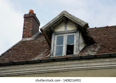 Bird in a Window in Auvers on the Oise France