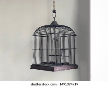 the birdcage hanging by white wall. decoration only, no actual bird in the cage.