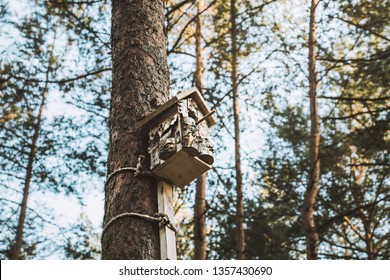 Birdhouse in a beautiful forest. House for birds handmade. Fairy birdhouse in an incredible forest.