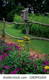 Birdhouse on rustic fence with Prairie Sun Rudbeckia (Rudbeckia Hirta) and Homestead Purple Verbena, Illinois