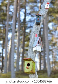birdhouse on a tree.