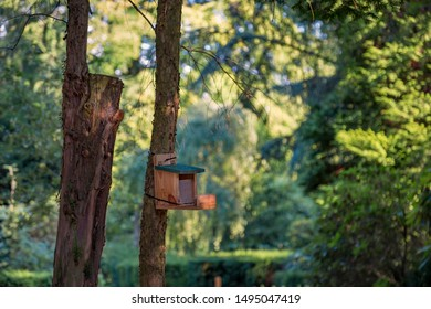 Birdhouse on a tree trunk in the open air