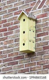 Birdhouse on the wall for three sparrows