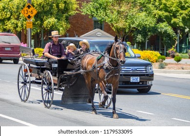 Bird-in-Hand, PA, USA - July 24, 2015: An Amish man in a horse-drawn wagon with two young boys drives on the Old Philadelphia Pike in Lancaster County.