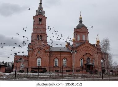 birds and church