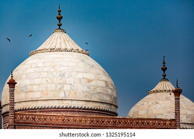 Birds circle over top of mable domes of the adjoining buildings