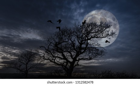 Birds coming into roost in a tree at full moon.