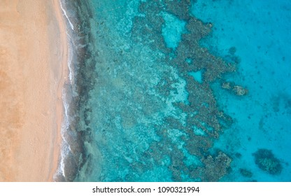 A birds eye view of a Coral Reef.