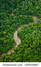 Bird's eye view of New Guinea jungle. Beautiful shape of the river that flows through the jungle. New Guinea. Indonesia.