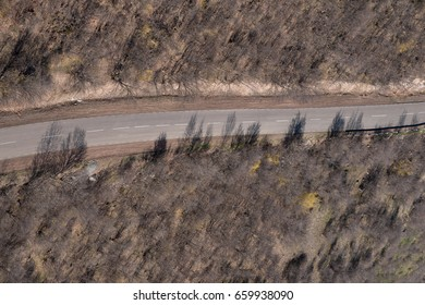 bird's eye view of public road with trees shadows.