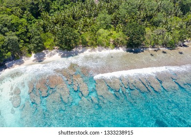 A bird's eye view of the remote island of New Ireland in Papua New Guinea shows reef growth along the coastline. This tropical area is part of the Coral Triangle due to its high marine biodiversity.
