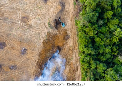 Birds eye view of tropical rainforest deforestation.  An earth mover removes trees which are then burnt
