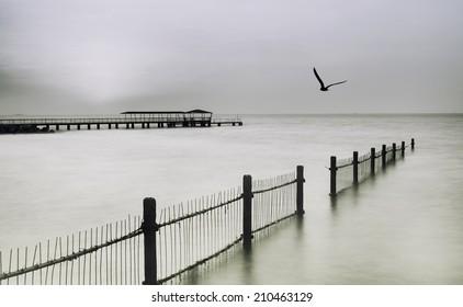 Birds fling over pier in the sea