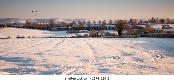 Birds fly over farmland fields and hedgerows covered in thick winter snow in the rolling landscape of Dorset's rural Blackmore Vale dairy farming district, with the Dorset Downs hills in he distance.