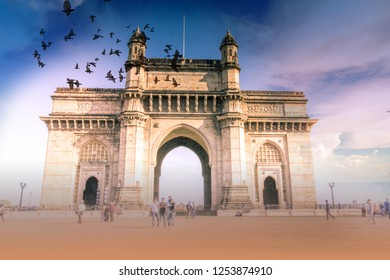 birds fly over gateway of  india at morning with tourist, mumbai, india