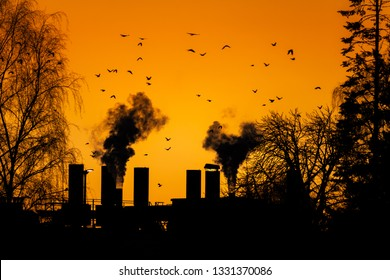Birds flying over the dark smoke comming from the chimneys of an old factory.