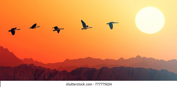 Birds flying over mountains to the sun. Flock of migrating geese in nature. Panoramic view