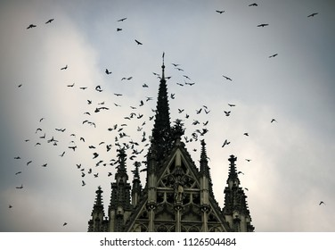 Birds and gothic church. Medieval architecture, dramatic sight, classy style, mystery concept. Flock of birds flying on dark sky.