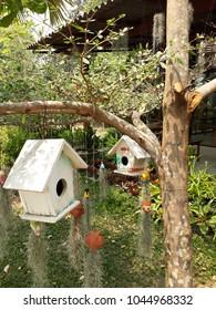 Birds house in the Garden