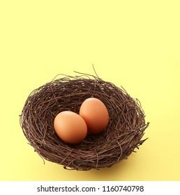 bird's nest and eggs