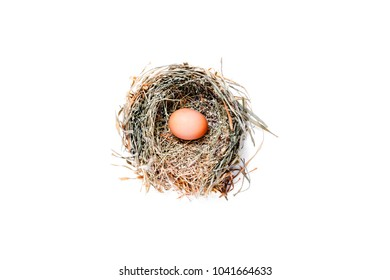 Bird's Nest with eggs isolated on white background.